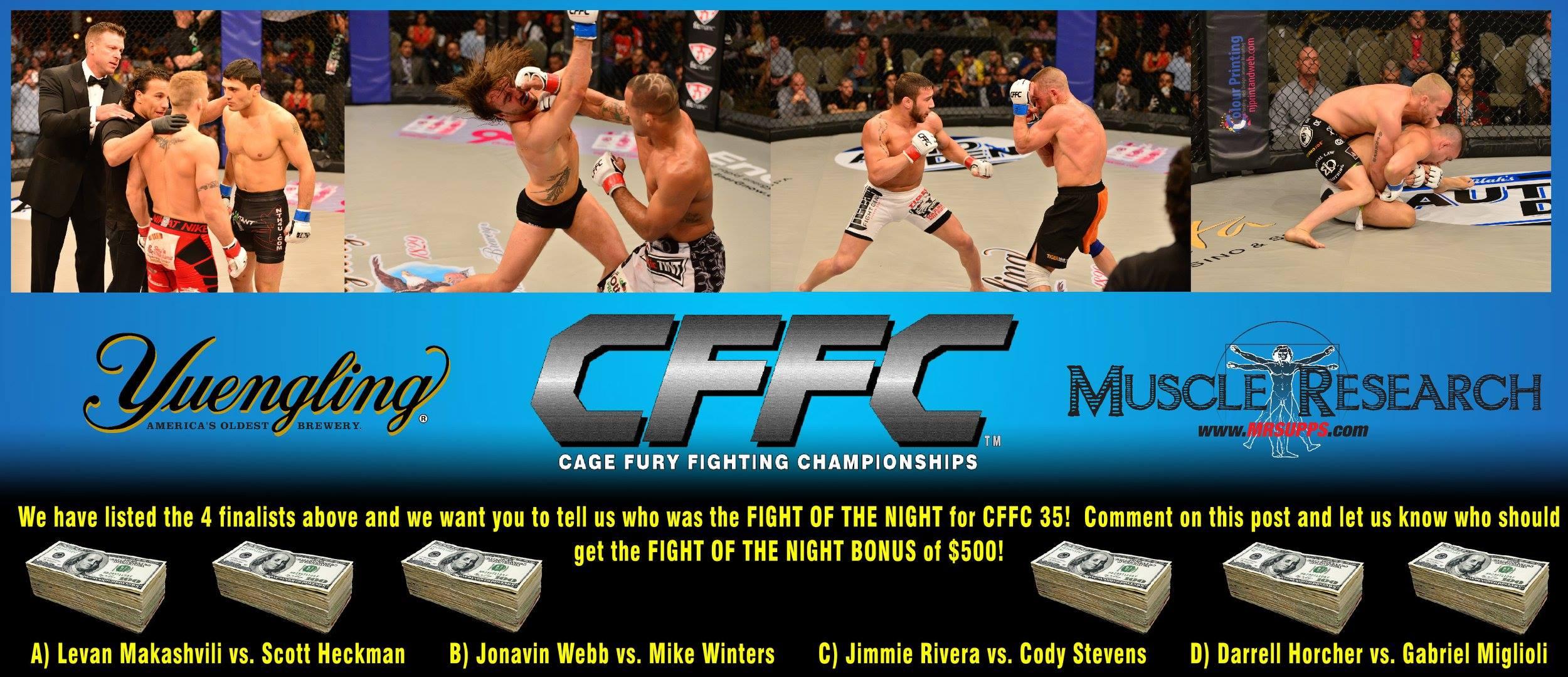 Tiger Schulmann's Martial Arts | CFFC Banner