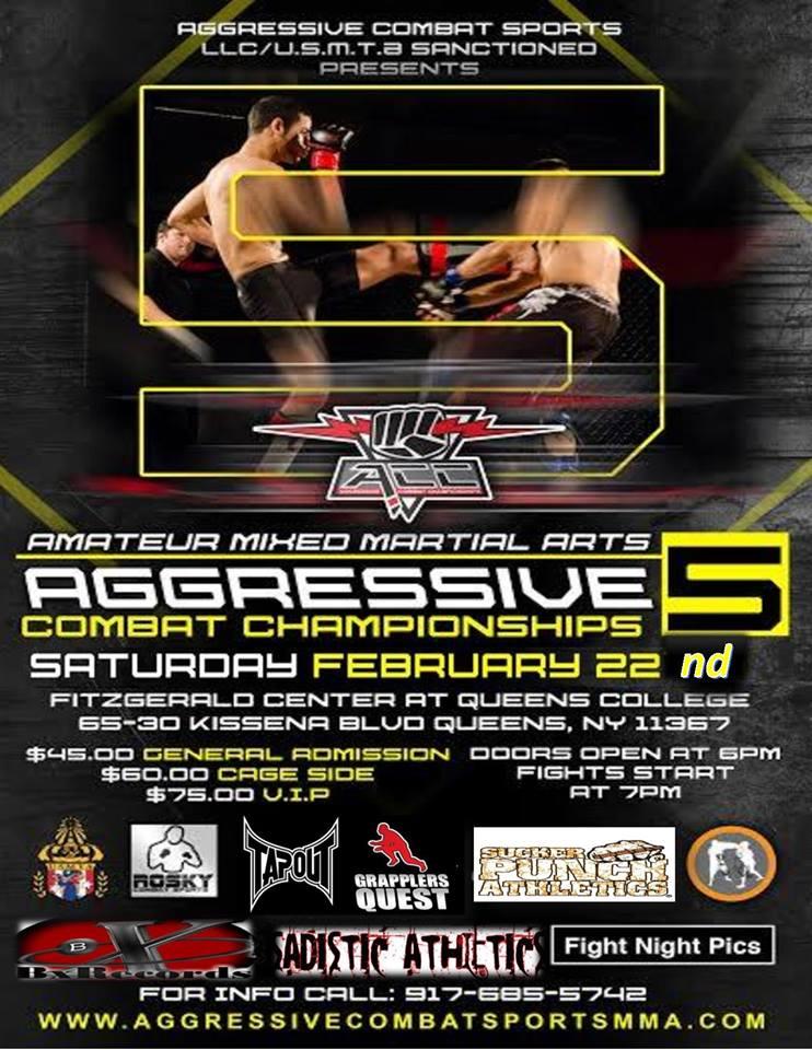 Tiger Schulmann's Martial Arts | Aggressive Combat Championship Banner