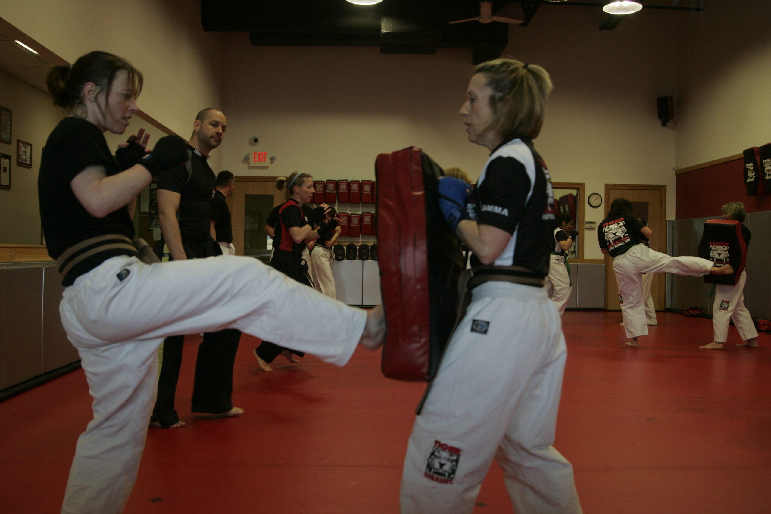 Tiger Schulmann's Martial Arts | 193