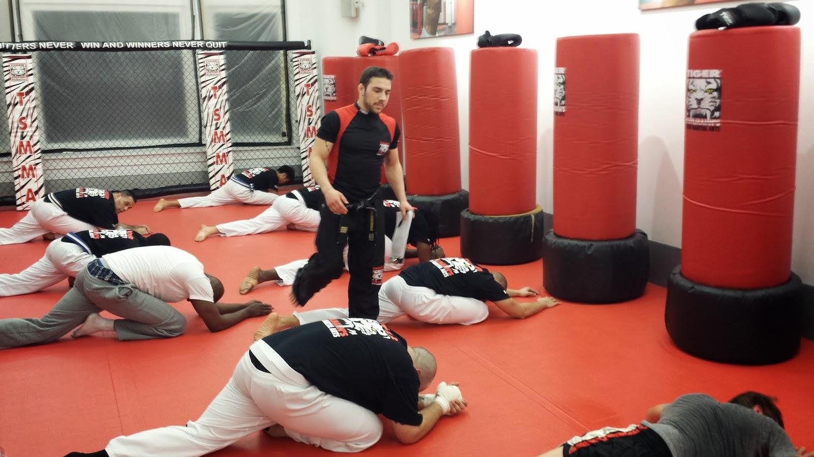 Tiger Schulmann's Martial Arts | Men on the Floor