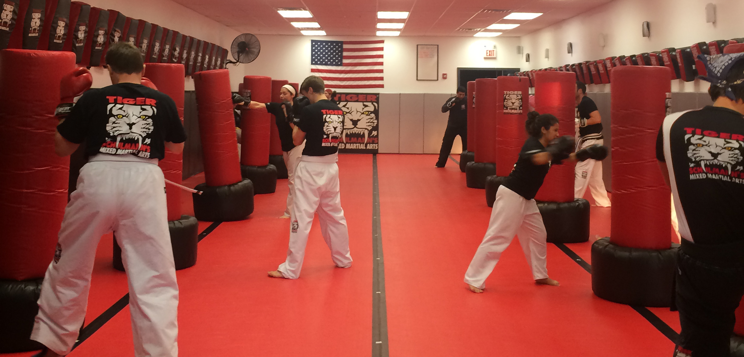 Tiger Schulmann's Martial Arts | Adults Training