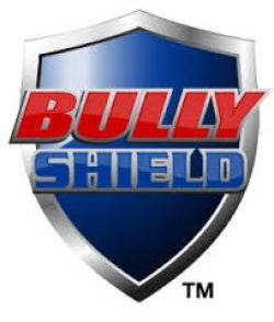 Tiger Schulmann's Martial Arts | Bully Shield Logo