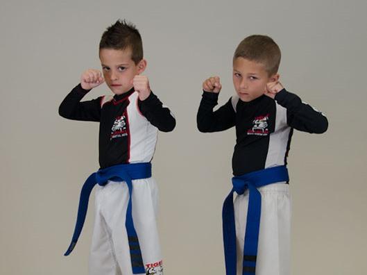 Tiger Schulmann's Martial Arts | Boys Punching Pose