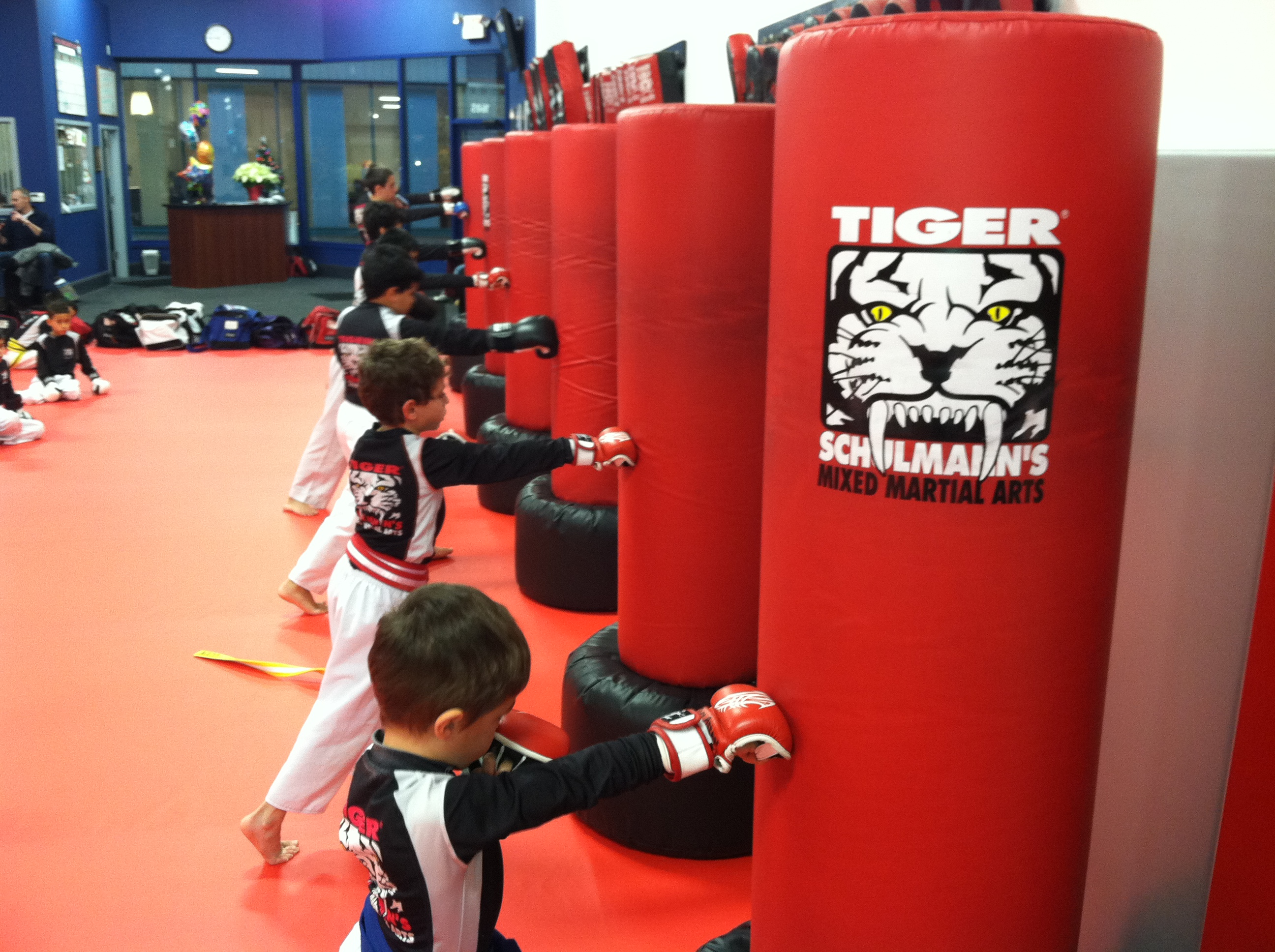 Tiger Schulmann's Martial Arts | Children Punching