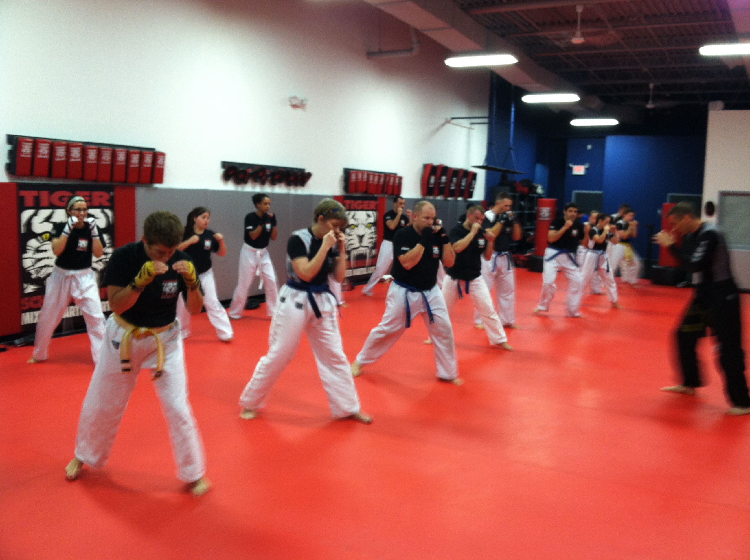 Tiger Schulmann's Martial Arts | Adults Training