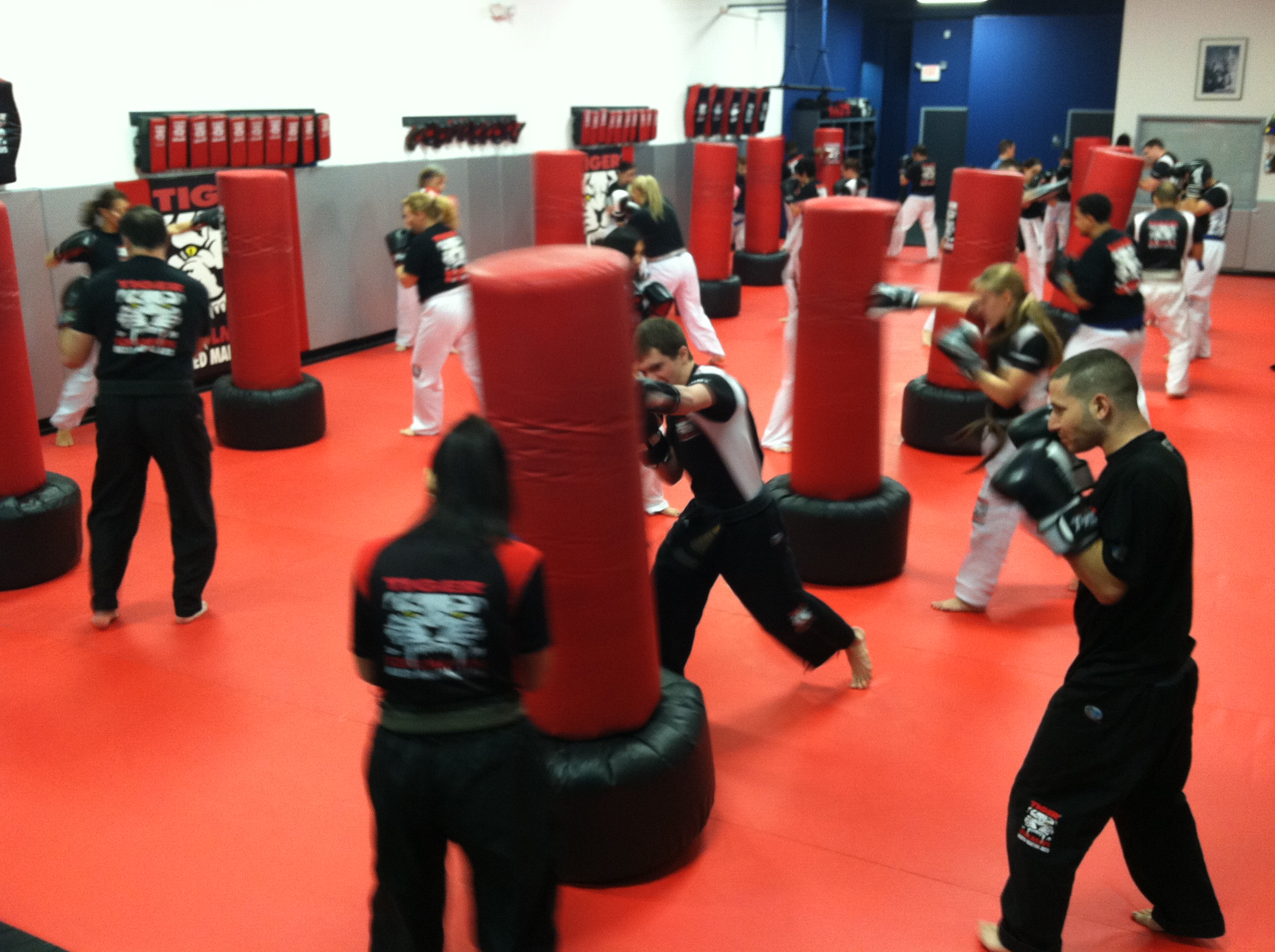 Tiger Schulmann's Martial Arts | Team Training