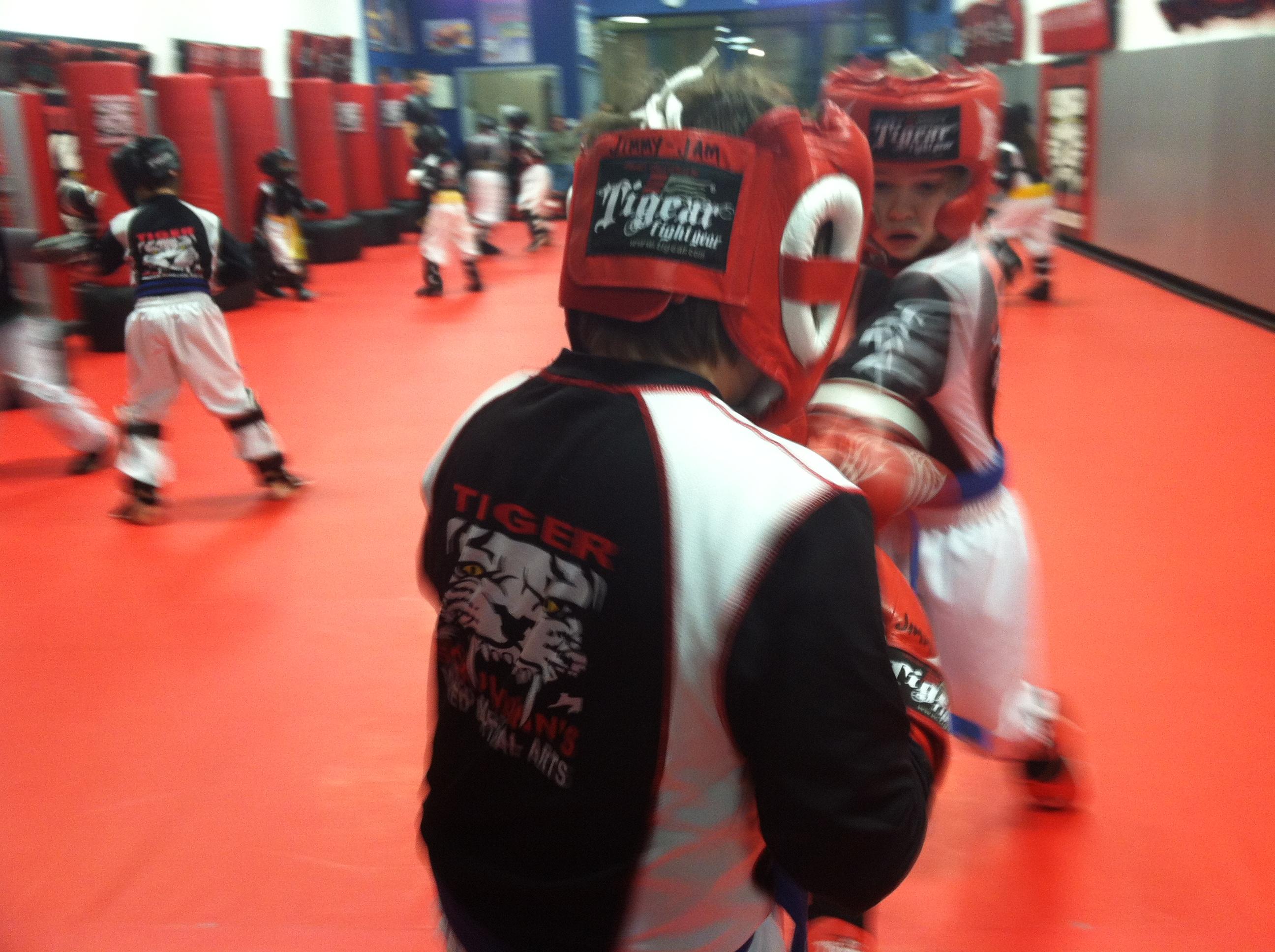 Tiger Schulmann's Martial Arts | Boy Punching