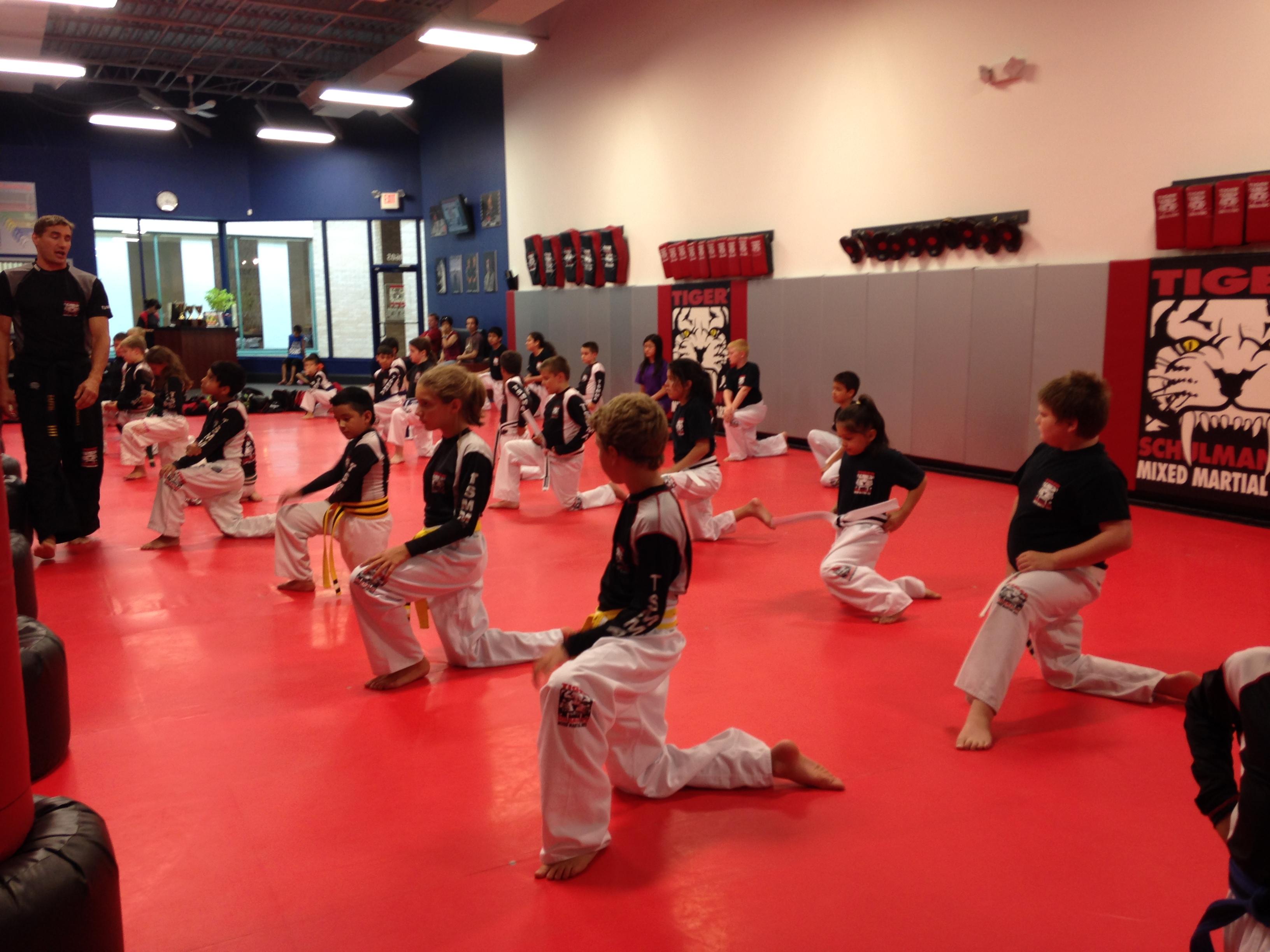 Tiger Schulmann's Martial Arts | Children Training