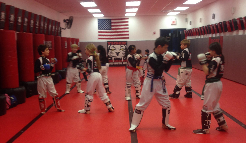 Tiger Schulmann's Martial Arts   Kids Training