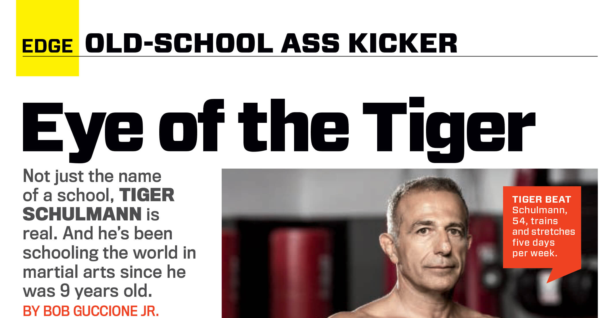 Tiger Schulmann's Martial Arts | Magazine Article