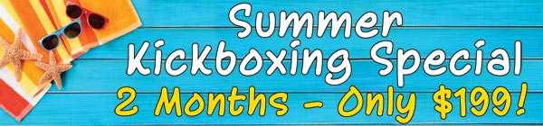 Tiger Schulmann's Martial Arts | Summer Kickboxing Banner