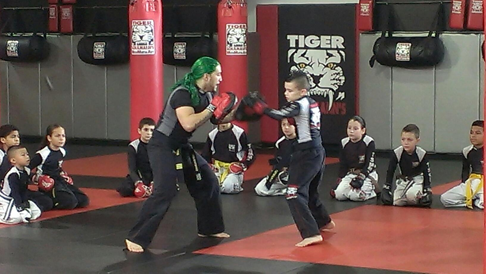 Tiger Schulmann's Martial Arts | TSMMA-Commerical