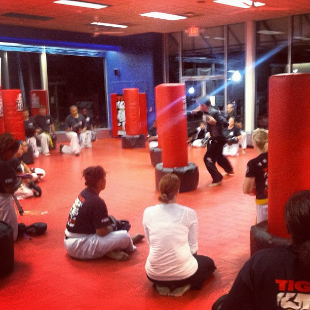 Tiger Schulmann's Martial Arts | Kickboxing Demo