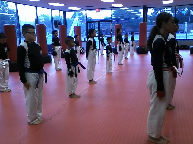 Tiger Schulmann's Martial Arts | Children Lined Up