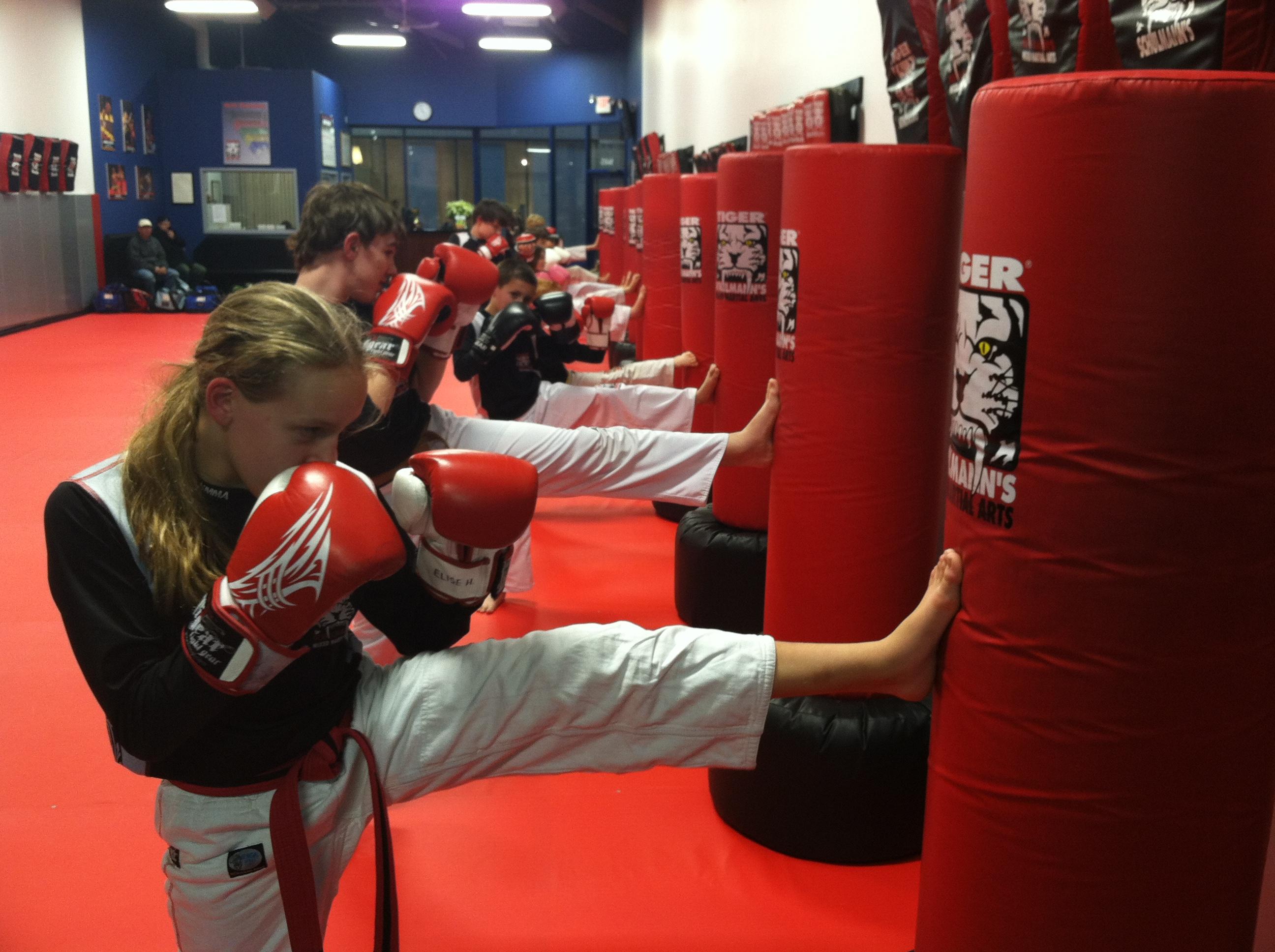 Tiger Schulmann's Martial Arts | Team Kicking