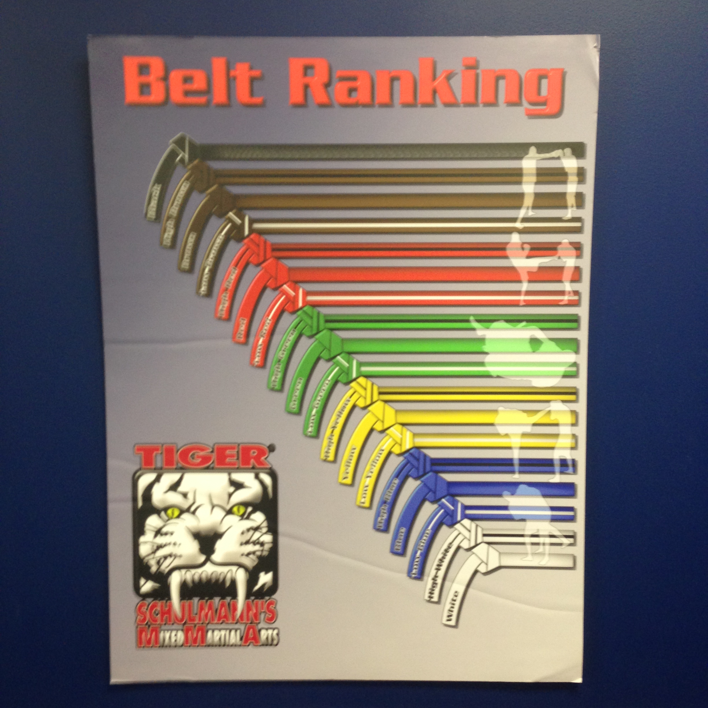 Tiger Schulmann's Martial Arts | Belt Ranking