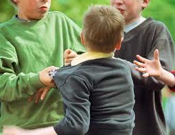 Tiger Schulmann's Martial Arts | Bullying Boys