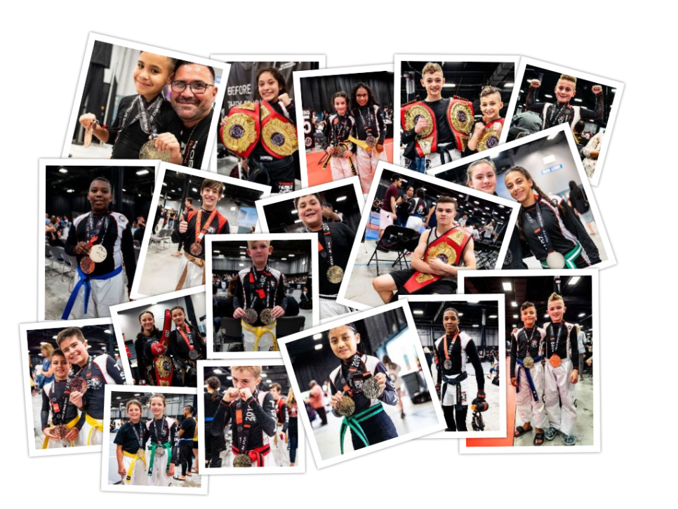 Tiger Schulmann's Martial Arts | Champion Collage