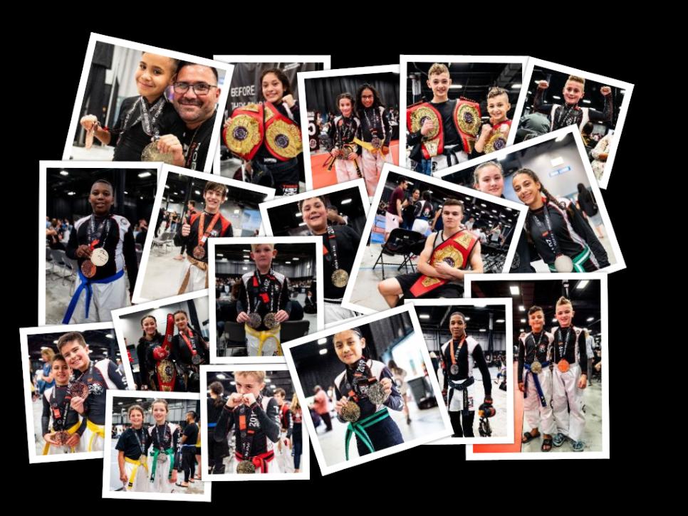 Tiger Schulmann's Martial Arts | Champion Collage