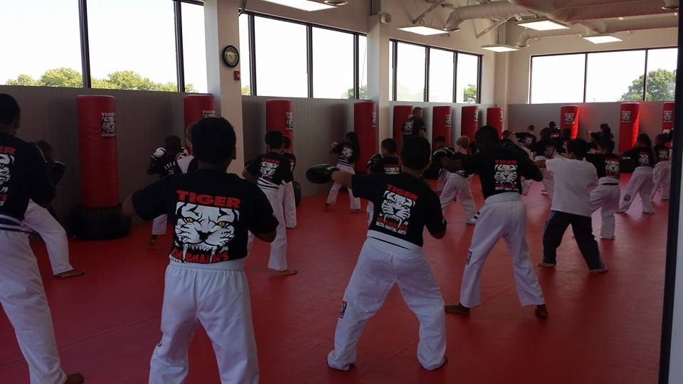 Tiger Schulmann's Martial Arts | Tiger Schulmann's Martial Arts | Children Training