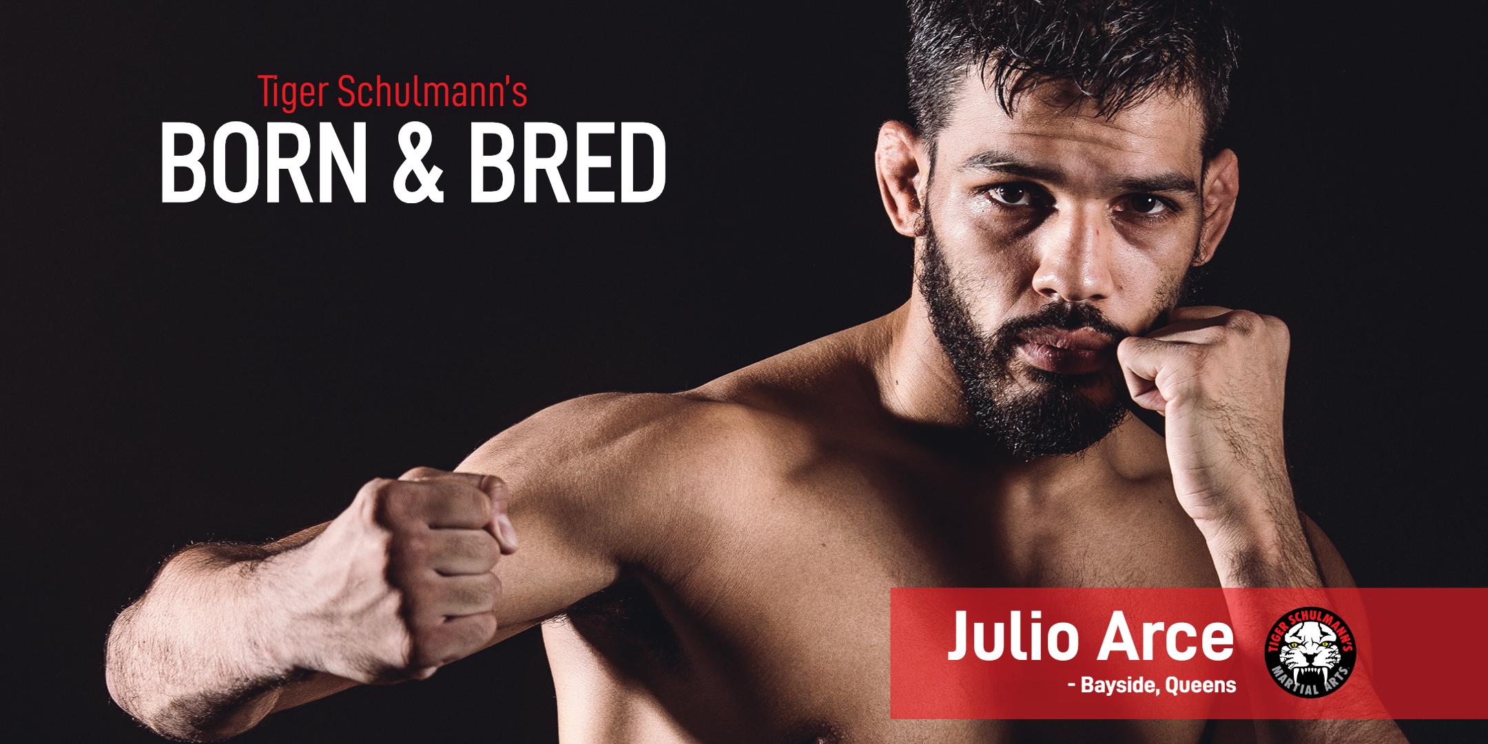 Tiger Schulmann's Martial Arts | Julio Arce