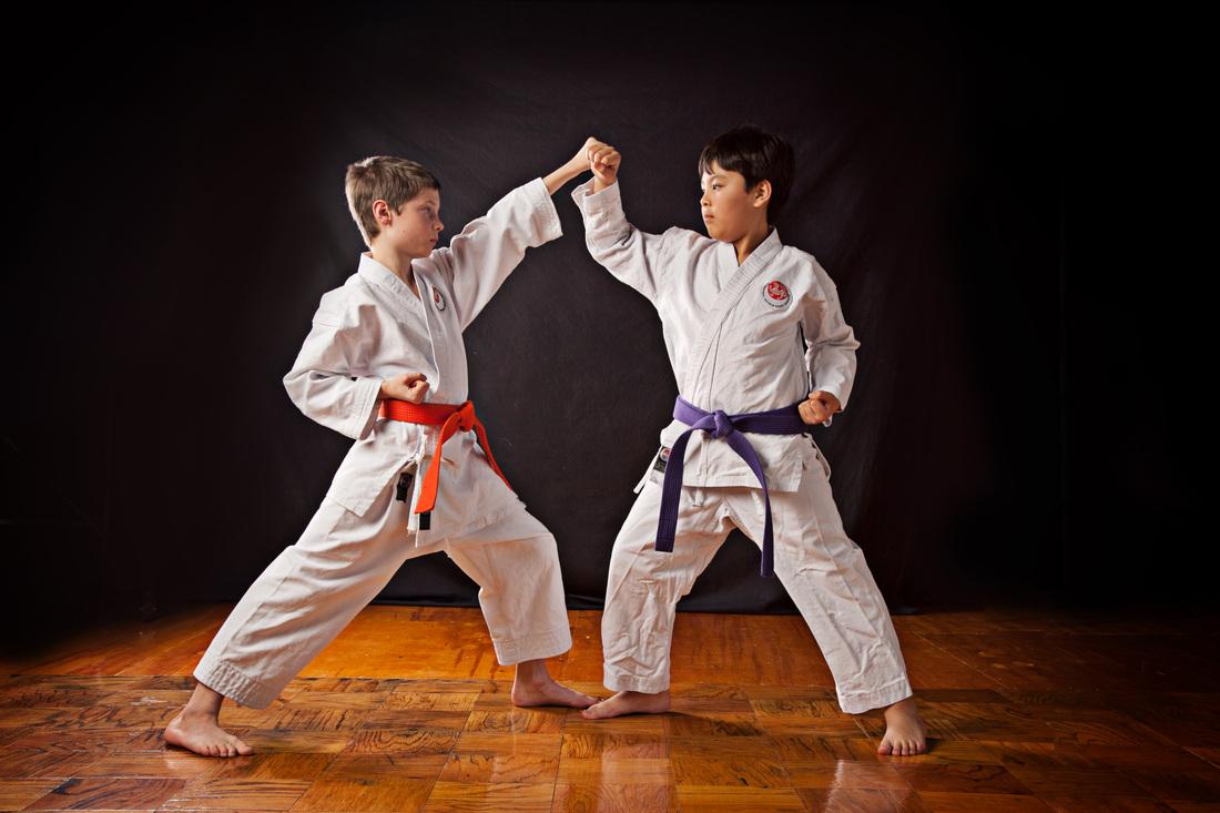 Tiger Schulmann's Martial Arts | Kids Fighting