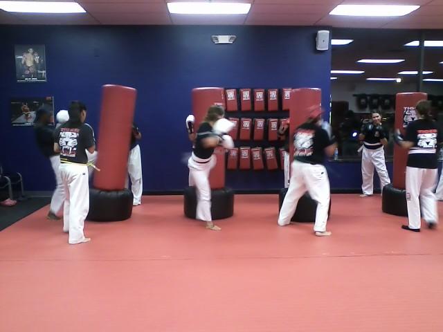 Tiger Schulmann's Martial Arts | Women Kicking Bags