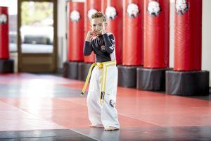 Tiger Schulmann's Martial Arts | Boy Punching Pose