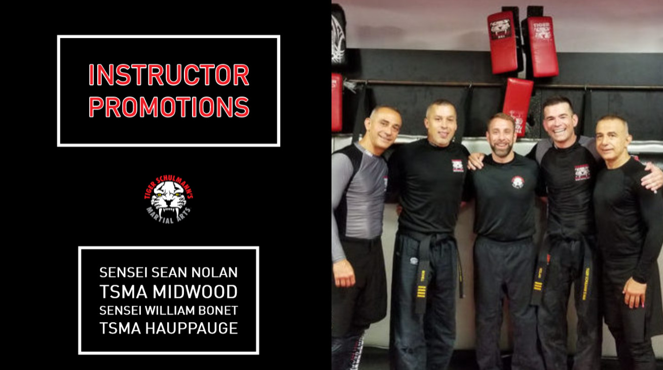 Tiger Schulmann's Martial Arts | Sean Nolan Promotion