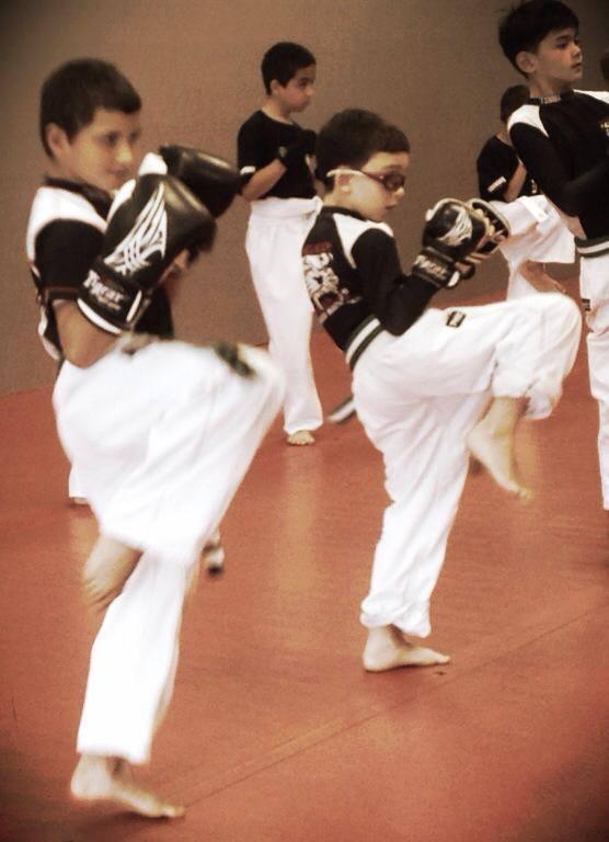 Tiger Schulmann's Martial Arts | Boys Kicking