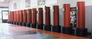 Tiger Schulmann's Martial Arts | Punching Bags